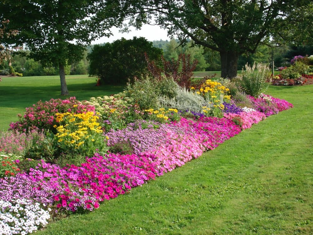 Edging design ideas designs for garden flower beds for Garden border design