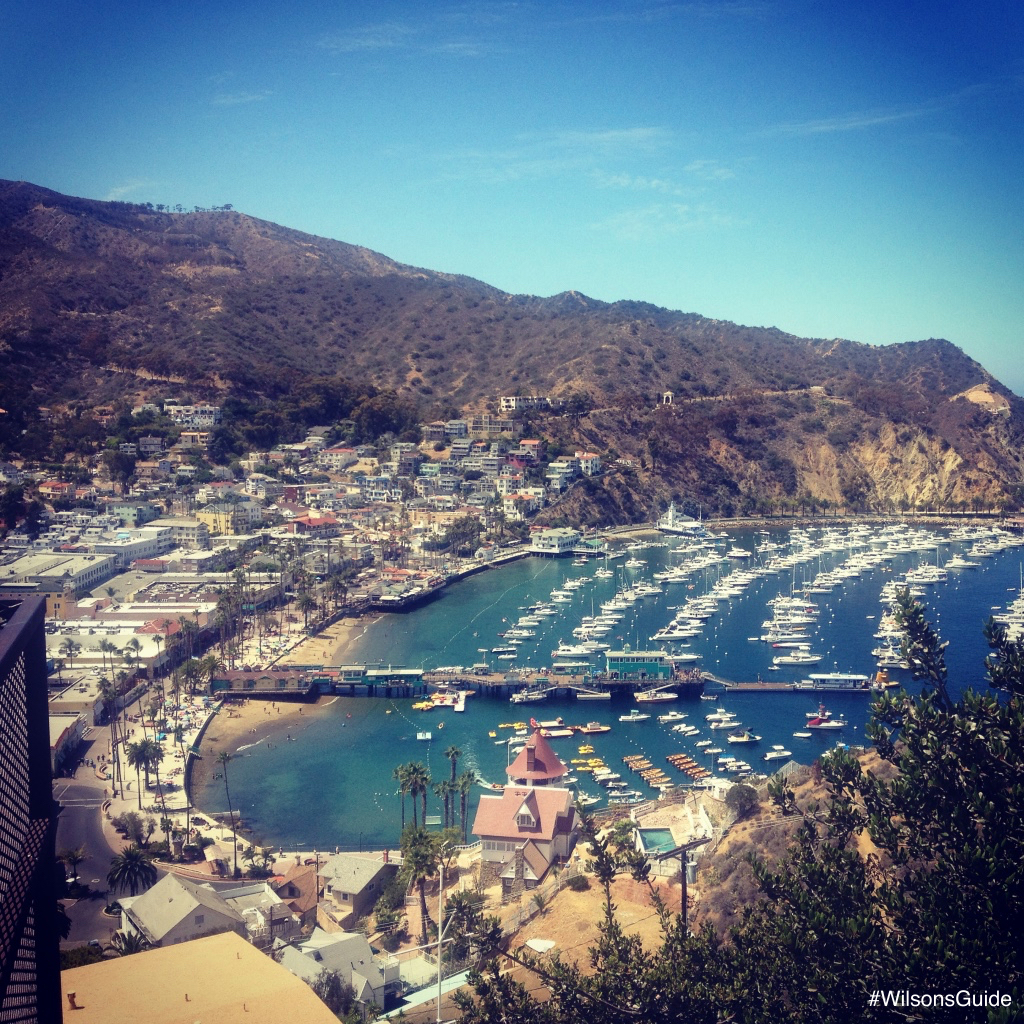 wilsonsguide where to travel avalon santa catalina island