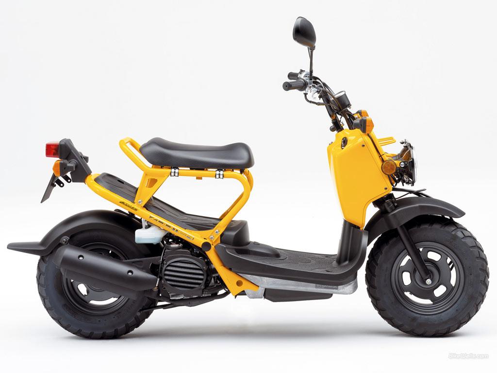 Charmant Honda Ruckus Rahmen Mit Titel Ideen - Benutzerdefinierte ...