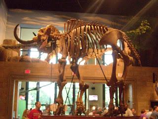 What Meg Said Creation Museum Photos