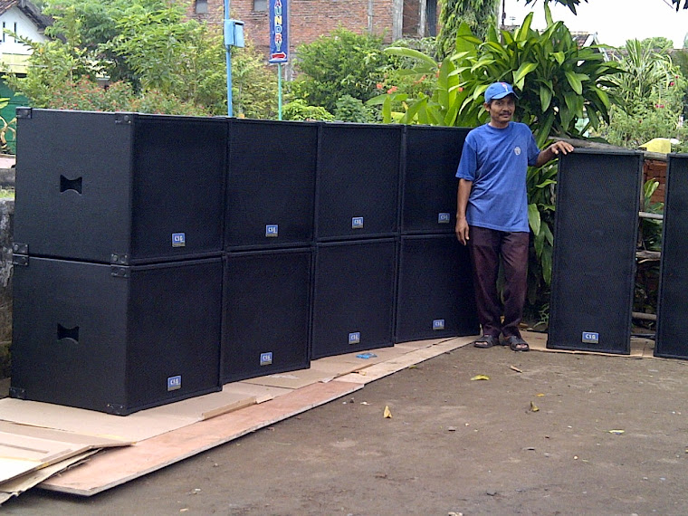 C s g audio professional sound system amplifier built up for Ukuran box salon 8 inch