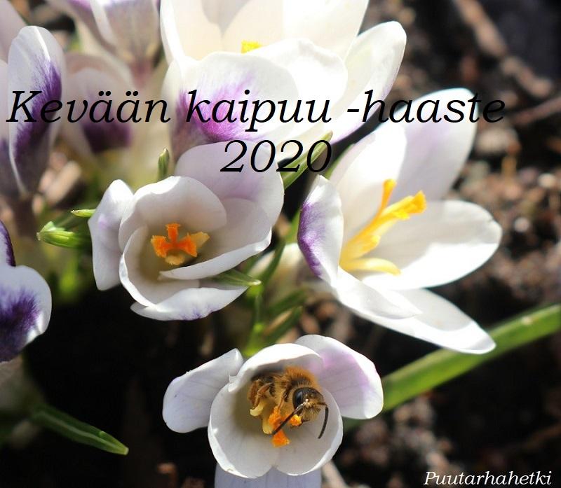 #keväänkaipuuhaaste @puutarhahetki 2020