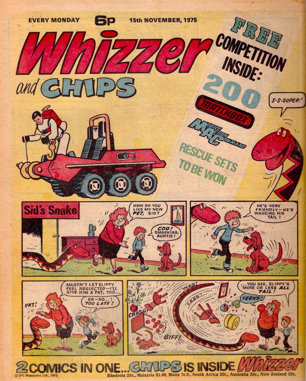 whizzer+chips+front.jpeg