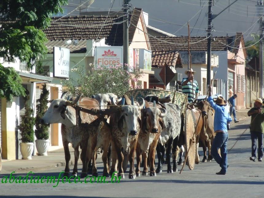 Desfile Carros de Boi