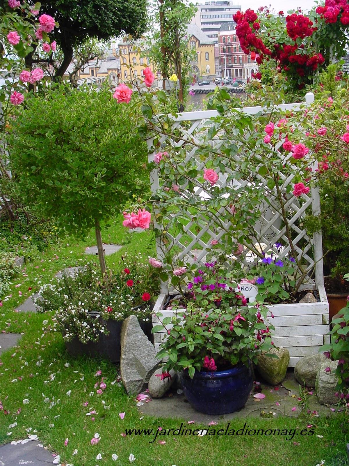 Jardineria eladio nonay un jard n de cuento jardiner a - Jardineria eladio nonay ...
