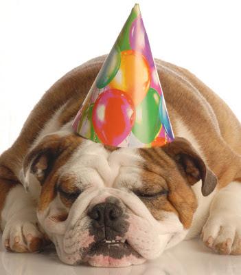 """Party-Dogge: Nur mal probieren, machen doch """"alle"""". Photo by ClipArt auf OfficeOnline"""