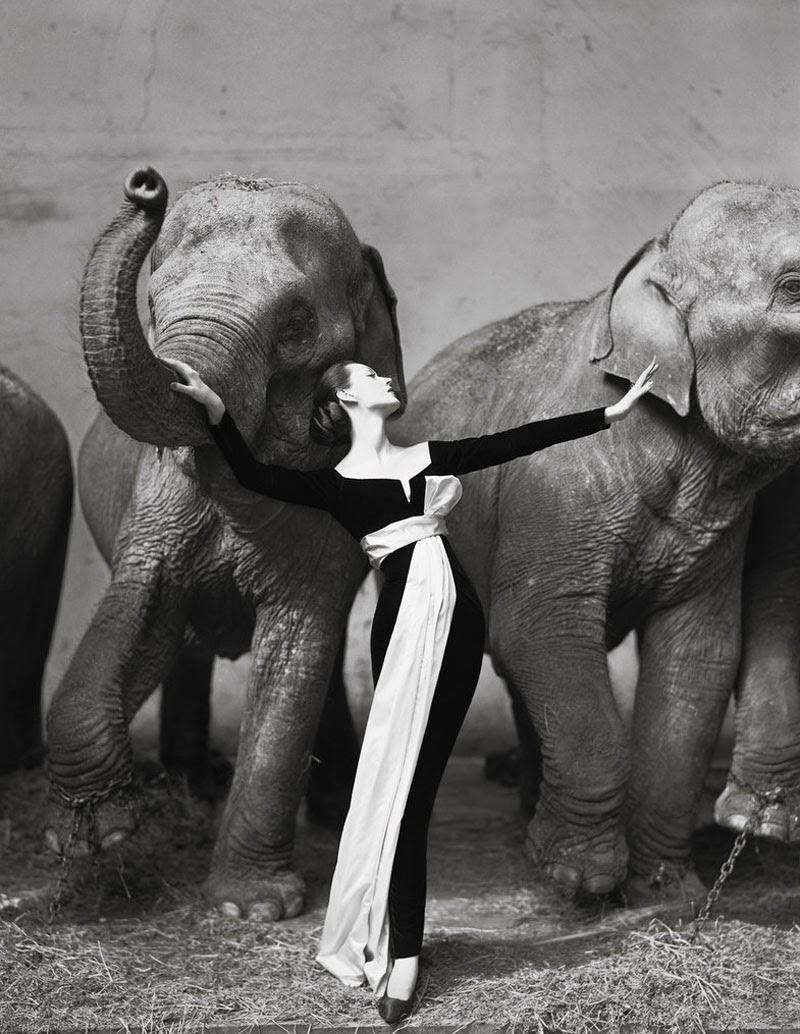 Los 10 fotógrafos de moda más prestigiosos: Richard Avedon