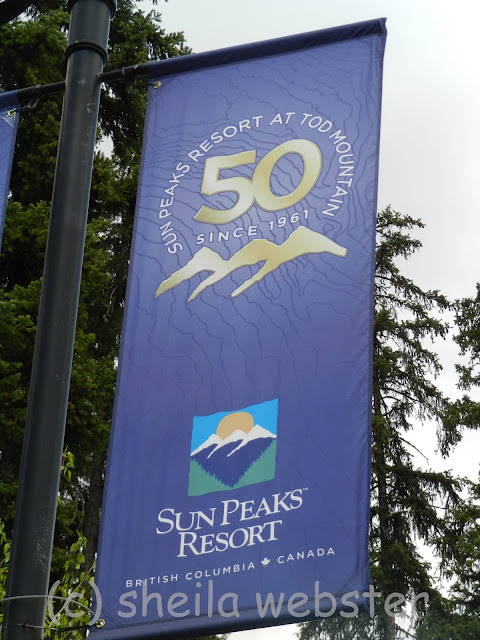 The banners hang on posts above the street to celebrate the 50th anniversary of the opening of Tod Mountain skiing.