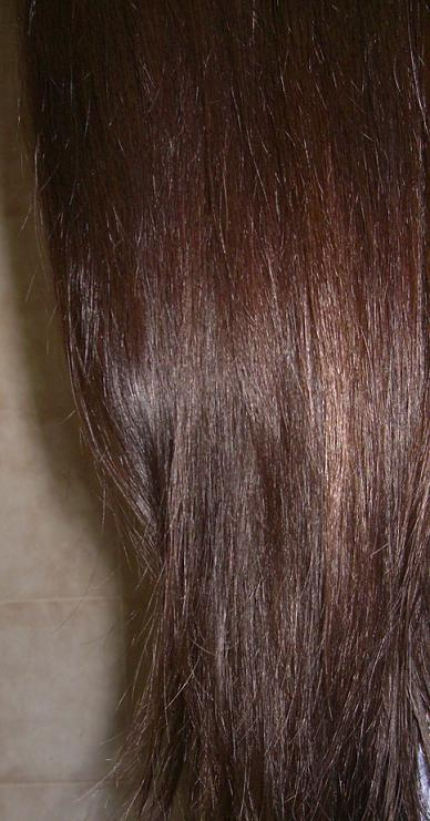 Blushed Wombat Dariya Salon De Pro Hair Color Bubble