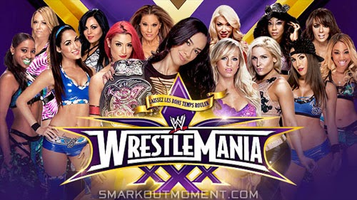 WWE WrestleMania 2014 AJ Lee Divas Title Loss