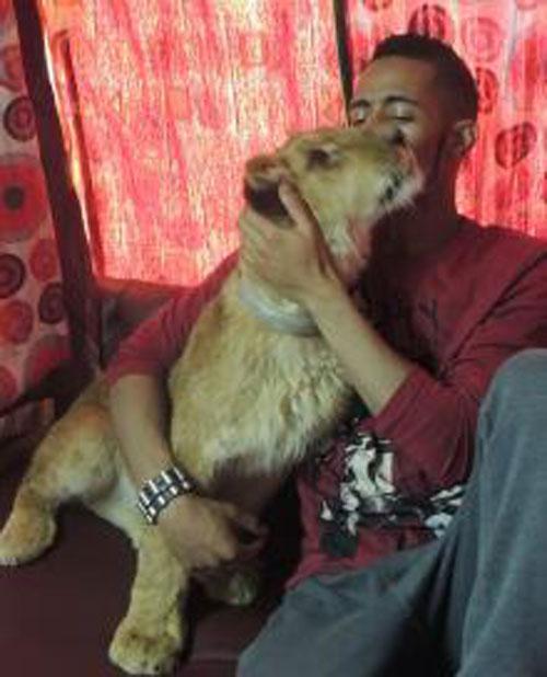 صور فيلم قلب الاسد 2014 فيلم العيد صور النجم محمد رمضان في فيلم قلب الاسد 2014