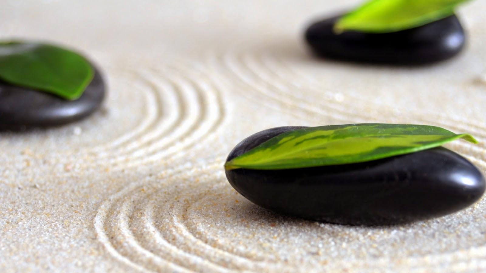Decoraci n japonesa decoraci n para un jard n de estilo zen - Que es un jardin zen ...