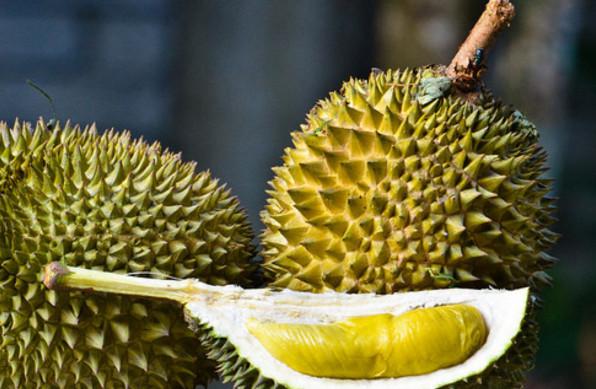 ăn sầu riêng sẻ khiến bạn gây mụn