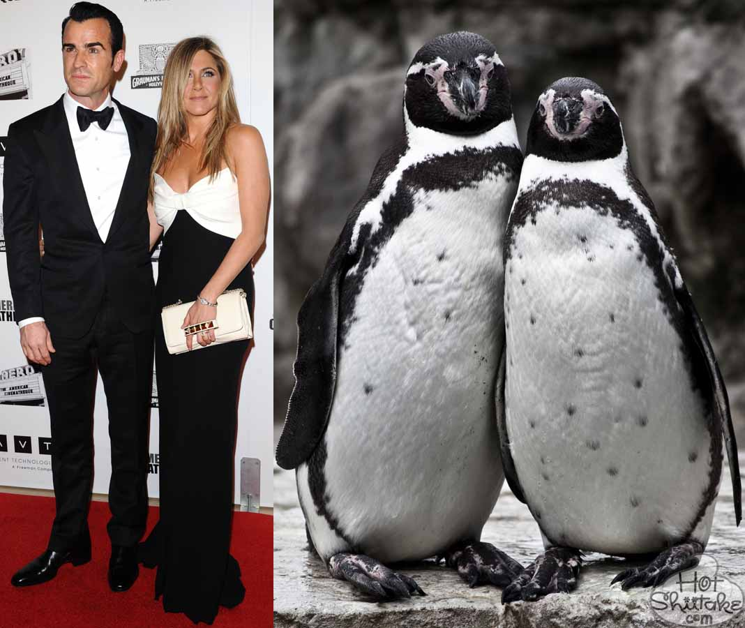 http://4.bp.blogspot.com/-WXW61w4-wVg/UKhRsTVcxhI/AAAAAAAABYQ/5vtpnnEq2HE/s1600/jennifer-aniston-justin-theroux-penguin-couple-american-cinematheque-awards-2012.jpg