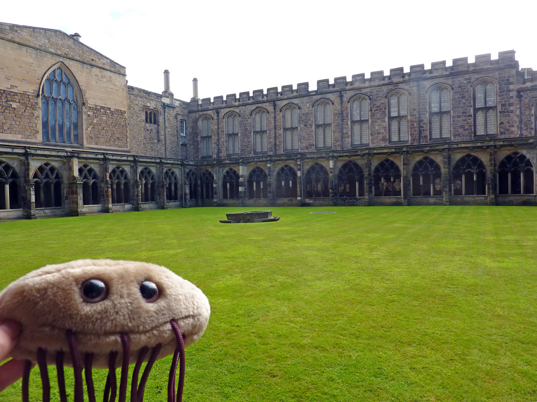 Escherichia's little adventures: Durham Cathedral