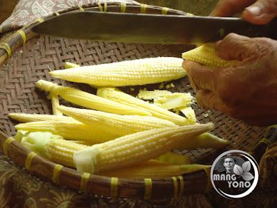 Baby corn / jagung semi / jagung putri