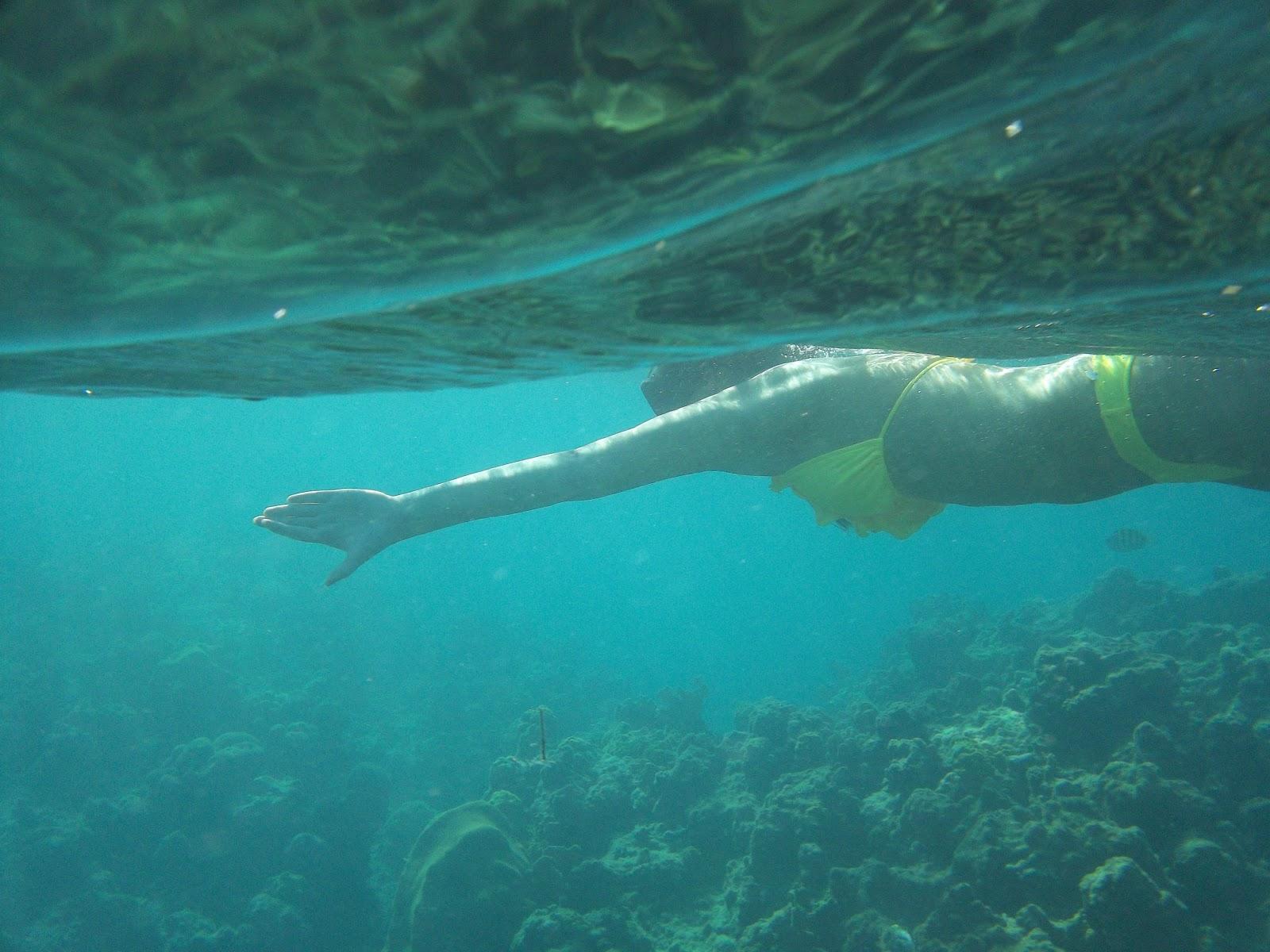 Detours With Michelle Beautiful Places Montego Bay Jamaica