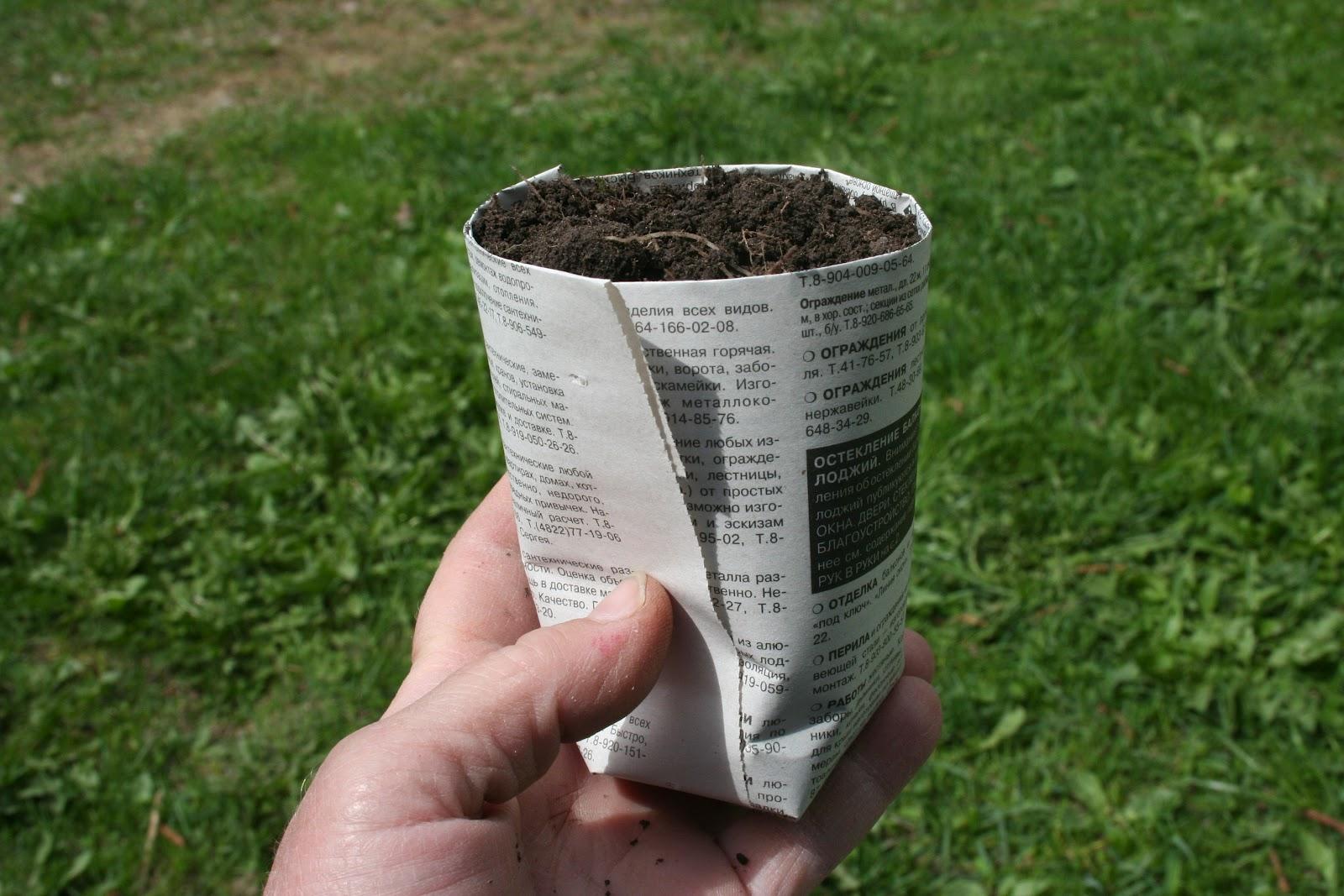 Как из бумаги сделать стаканчик для рассады из
