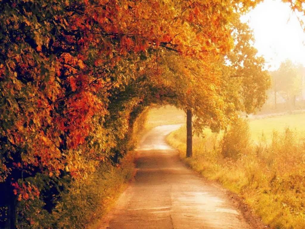 Стих ухожу в осень