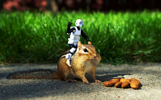 Chipmunk Lego Stormtrooper Funny HD Wallpaper