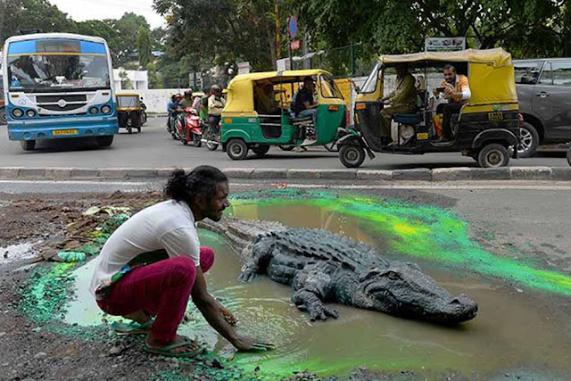 Crocodile On Road To Grab Attention Of Civic Authorities In Bengaluru