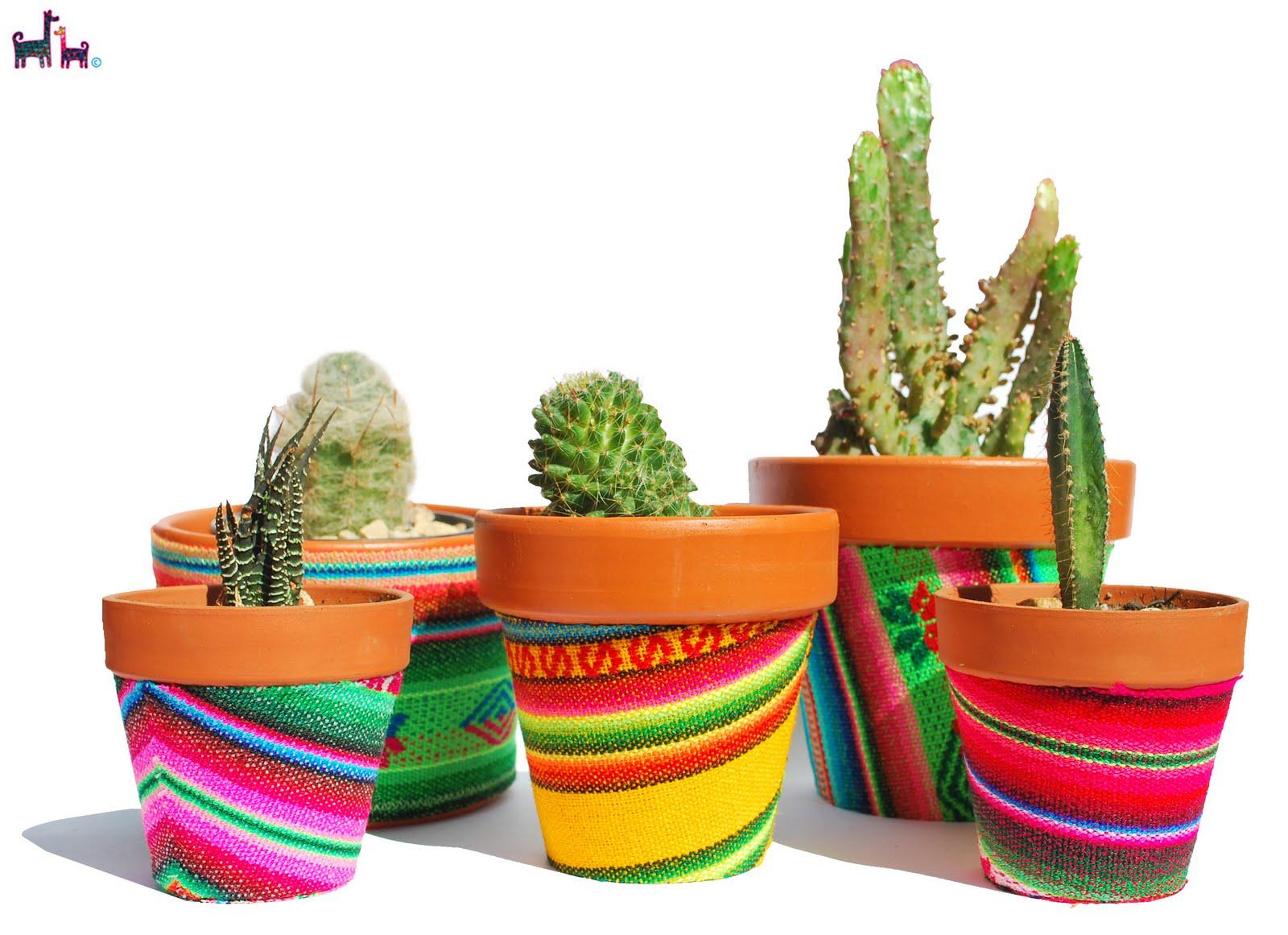Mis 7 colores decora tu jardin for Jardin 7 colores bernal