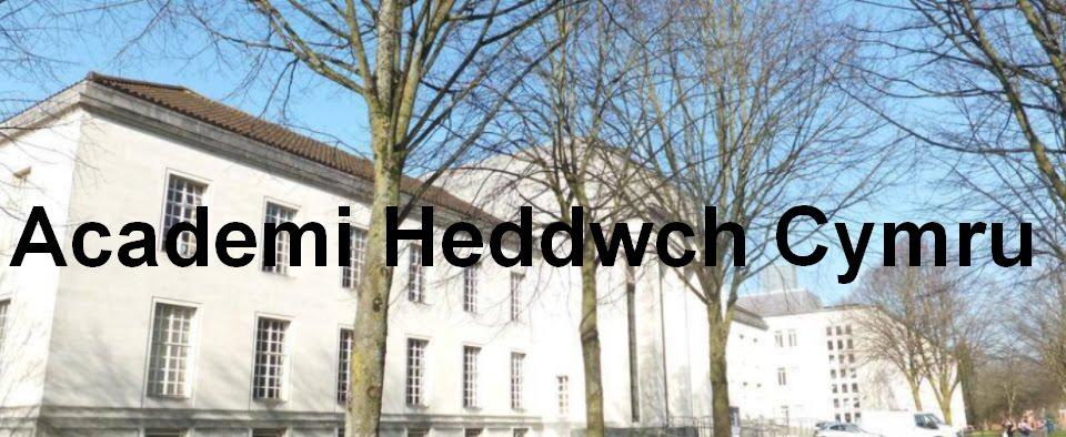 Establishing an Academi Heddwch Cymru