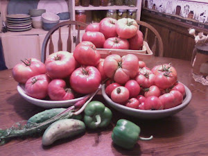 Heirloom vs. Organic...what does it all mean?