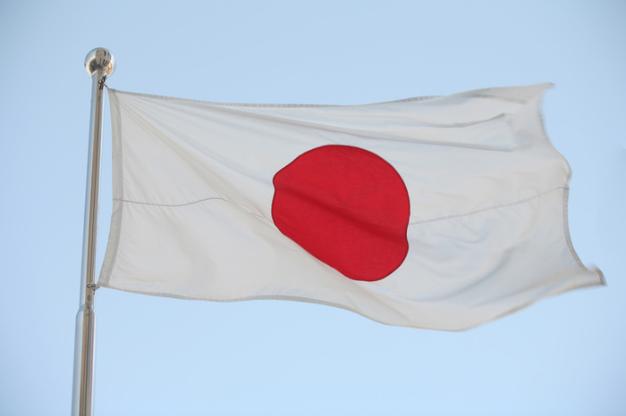 japanflag MICRO MINI Bikini
