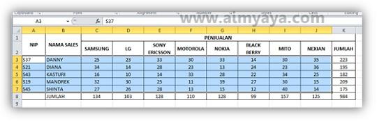 Gambar: Contoh hasil pengurutan data berdasarkan kolom B (nama sales)