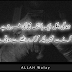 Our Life is like a Boxing Match - Urdu Quotes On Life ever, urdu designing