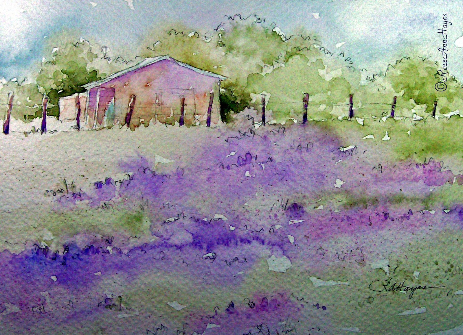 Watercolor paintings by roseann hayes lavender field for Paintings to copy