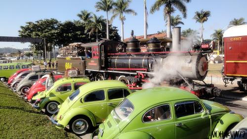 VW Brazilian Connection