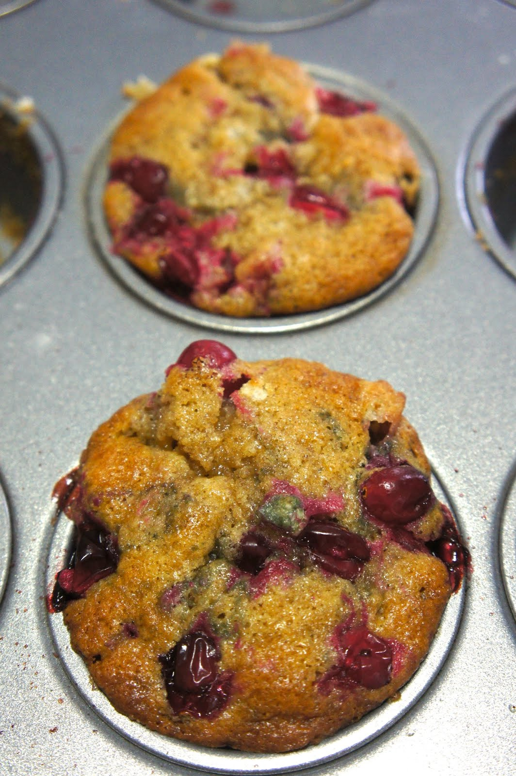 Cranberry White Chocolate Muffins: Savory Sweet and Satisfying