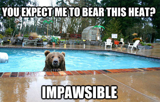 You expect me to bear this heat? Impawsible