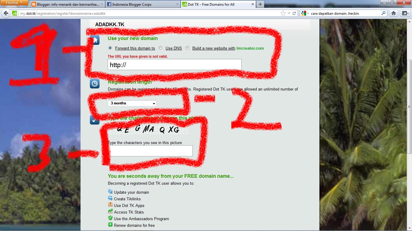 cara medapatkan domain .tk gratis