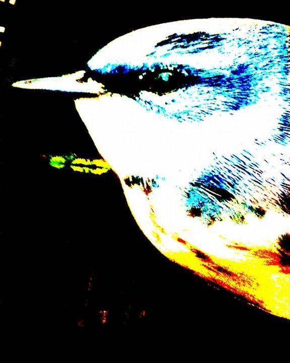 L 39 immagine allo specchio luglio 2012 - L immagine allo specchio streaming ...