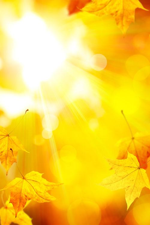 Sala De Estar Na Cor Amarela ~ COR AMARELA  Misturado aoVermelho exaltase, produzindo o Laranja
