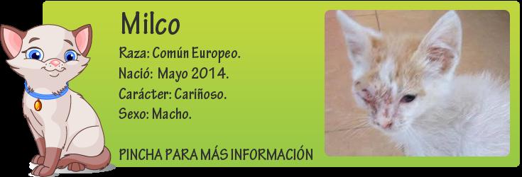 http://mirada-animal-toledo.blogspot.com.es/2014/06/milco-un-bebe-y-su-vida-puro-sufrimiento.html