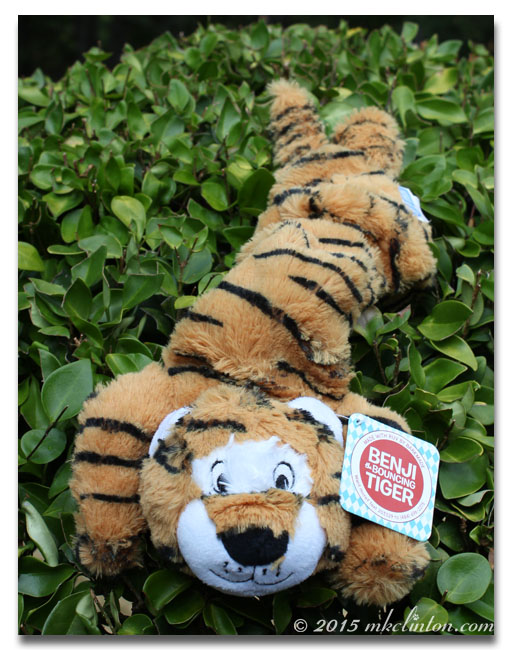 Delca Benji the Bouncing Tiger made for BarkBox