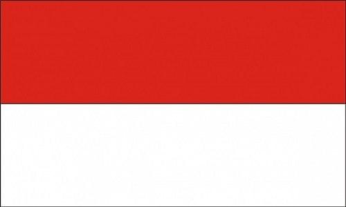 Siaran Langsung Indonesia VS Laos