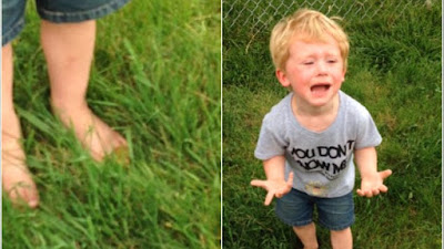 This kid stepped on a dog's poop and his reaction was so hilarious