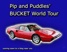 Follow Pip and Puddles on their World Tour