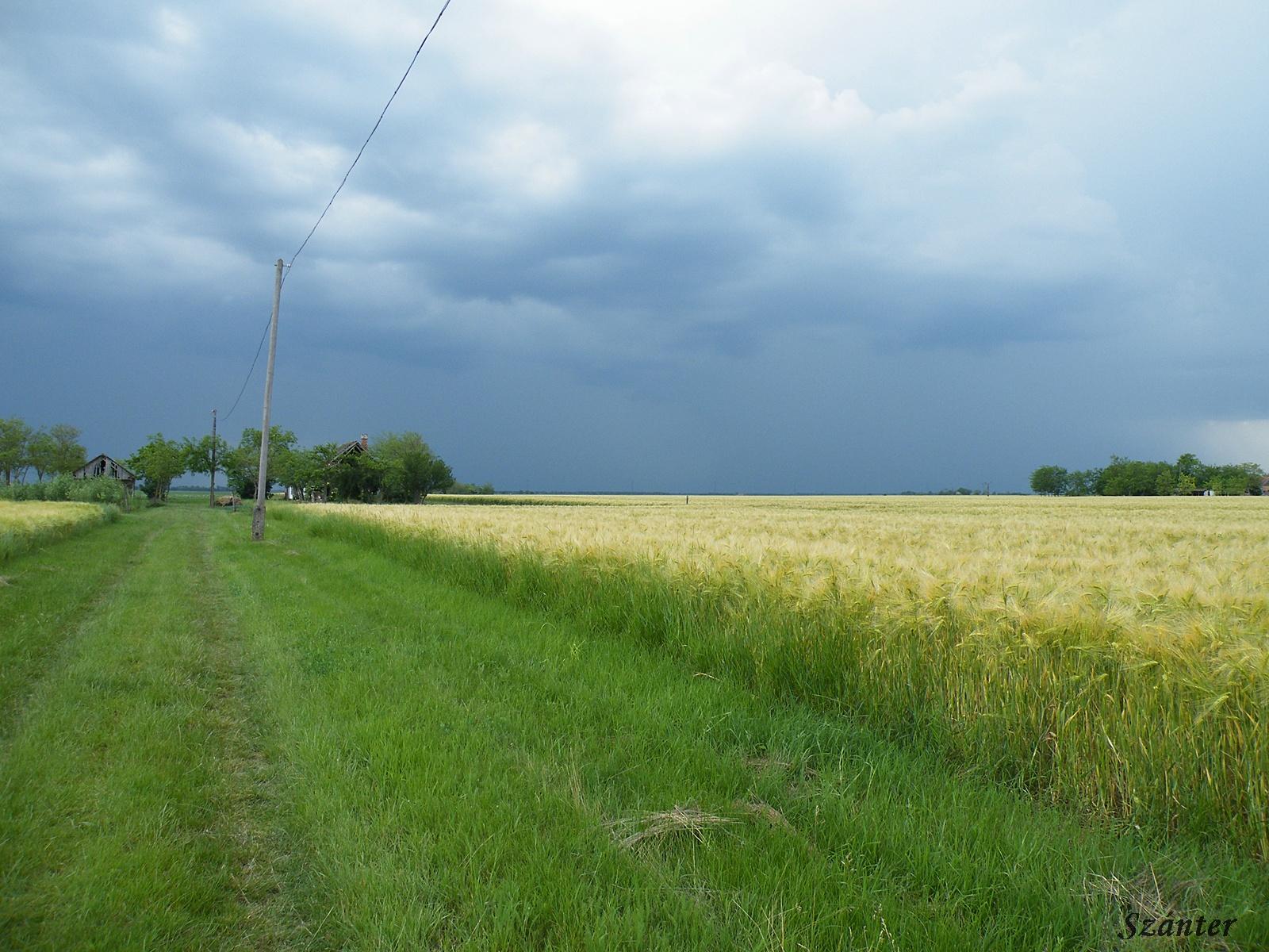 Vihar előtt.