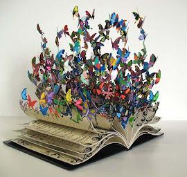Leitura de romances - uma experiência que transforma a vida