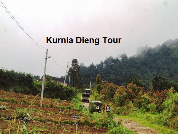 jalur off road dieng