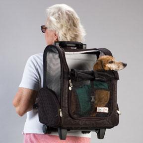 Accesorios para mascotas moda canina for Accesorios para mascotas
