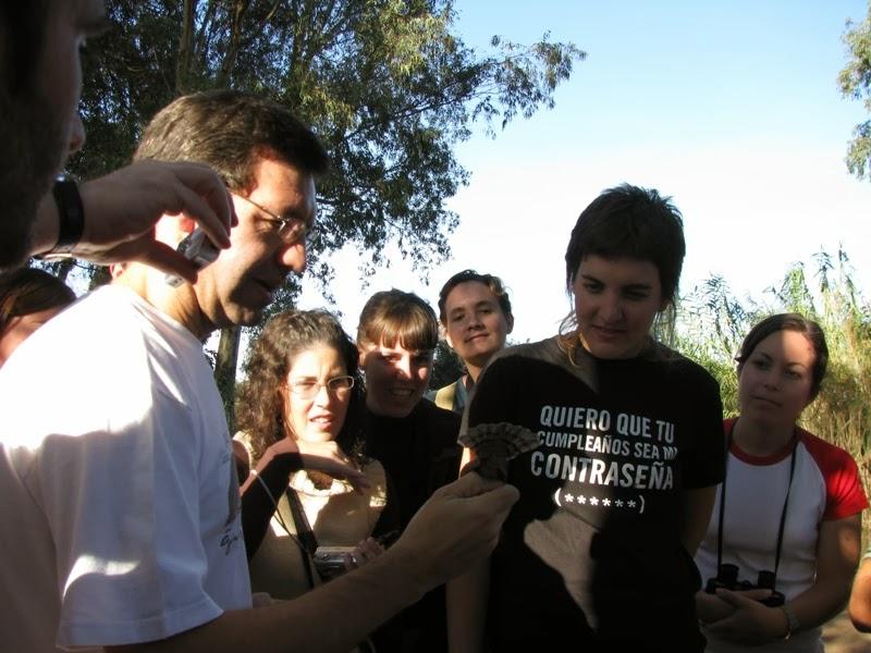 Curso de Iniciación a la Ornitología 2008. Organiza SEO-Sevilla. Anillamiento científico