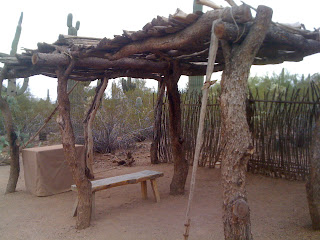 The Akimel and Tohono O'odham have harvested Saguara fruit for centuries and still do today