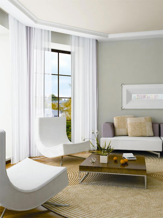 Gray Walls with White Trim